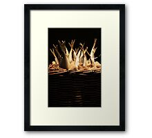Fish Basket Framed Print