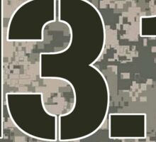 13.1 Oval Sticker - Military Camo Sticker