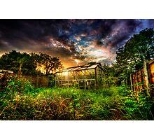 Greenhouse Effect Photographic Print
