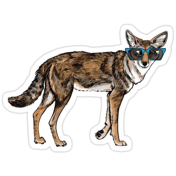 Cool Coyote with Sunglasses by Veronica Guzzardi