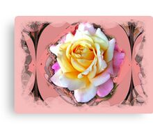 Gentle Rose Canvas Print