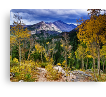High In the Rockies Canvas Print
