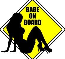 Babe on Board by Perrin Le Feuvre