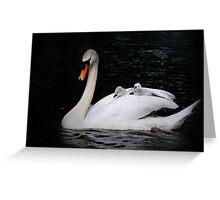 Swan taxi Greeting Card