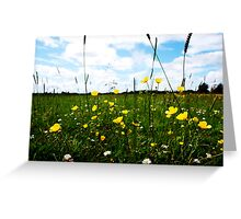 Buttercups and daisys Greeting Card