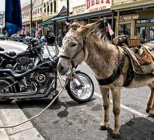 Alternative Forms of Transportation by TeresaB