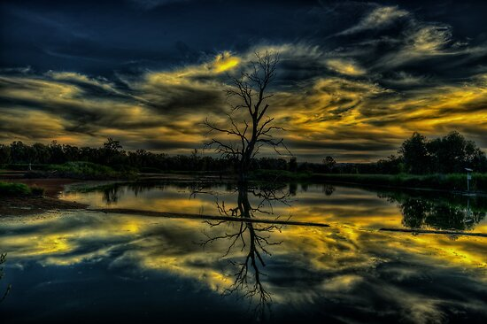 Wetland Twilight Abstract, Wonga Wetlands, Albury NSW Australia - The HDR Experience by Philip Johnson