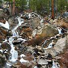 Grover Hot Springs, California by Zach Chadim
