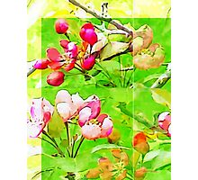 Spring is Dancing Photographic Print