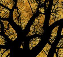Oak Tree Yellow Sticker