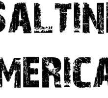 Saltine-American Cracker Funny Shirt Sticker Poster Humor Sticker