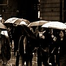 Rainy day Blues by Andrew Wilson