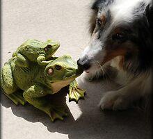 Kissing Frogs by jodi payne