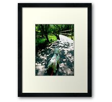 Time for adventure Framed Print