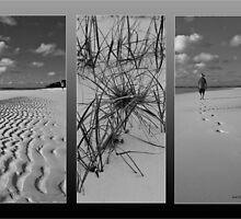 Living in Paradise by Sandra Boles