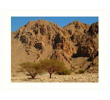 arid mountains Art Print