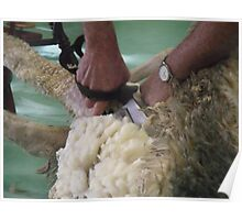 Shearing By Hand Poster