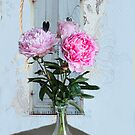 Pretty Peonies by Irene  Burdell