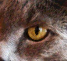 Cat Head Illustration - Sticker 3 Sticker