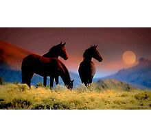 FEARLESS AND FREE THESE WILD HORSES ARE THE LUCKY ONES THEY BELONG TO NO ONE Photographic Print