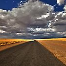 On the Road Again by Jill Fisher