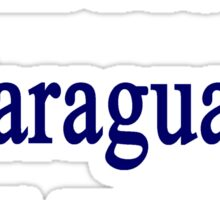 I Will Protect Paraguay Until The end  Sticker