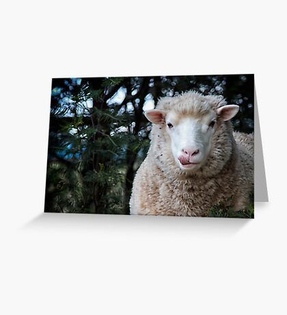 Beware the wolf in sheep's clothing! Greeting Card