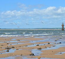 Whiteford Lighthouse, Whiteford Sands, Gower Peninsula by Paula J James
