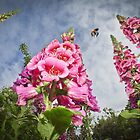 Foxgloves and Bee at Great Dixter House by Heather Buckley