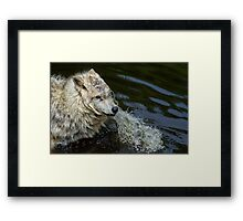 Wet & Wild  Framed Print