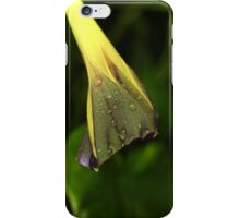 Rain Among the Morning Glories iPhone Case/Skin