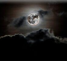Moonlight by Paul Howarth