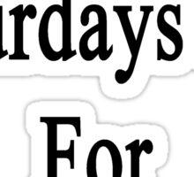 My Saturdays Are For Economics  Sticker
