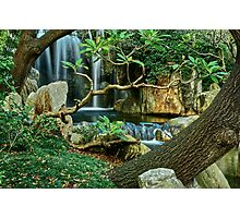 Japanese Gardens. Photographic Print