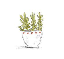 Succulent in Heart Planter by Sophie Corrigan