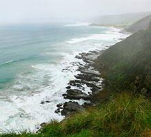 Foggy Ocean View  by Sandra Chung
