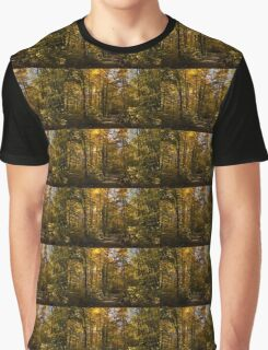 Sun and Shade Forest Trail - the Glory of Autumn Graphic T-Shirt