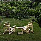 A place to relax by greyrose