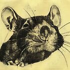 Rat 4 by freeminds