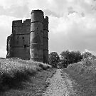 Donnington Castle BW by James Taylor
