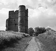 Donnington Castle BW by James Taylor