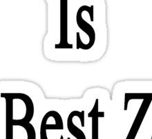 My Girlfriend Is The Best Zebra Doctor  Sticker