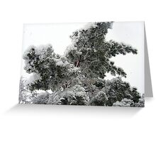 Heavy Spring Snowstorm Greeting Card