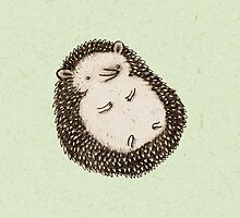 Plump Hedgehog by Sophie Corrigan