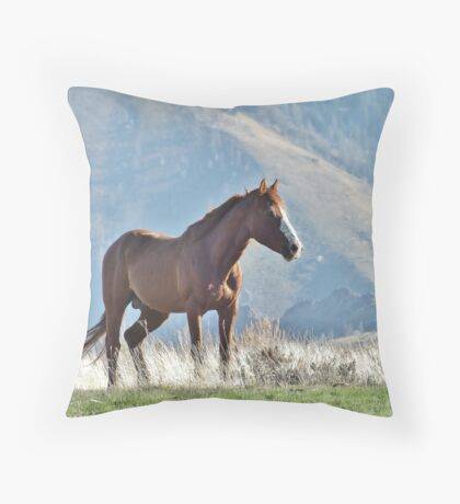 Wild Idaho Mustang Stud  (Best Viewed in LARGE format!) Throw Pillow