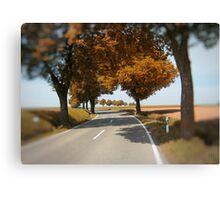 road to Bibertal II Canvas Print
