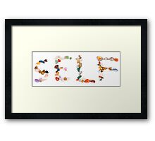 New age crystals and gemstones spelling out Self Framed Print