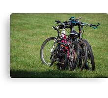 Family Day Out Canvas Print
