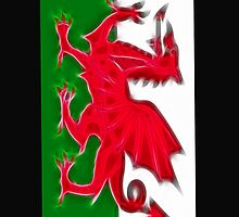 The Welsh Flag by Chris Thaxter