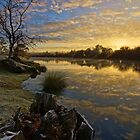 Frosty morn - Longford, Tasmania, Australia by PC1134